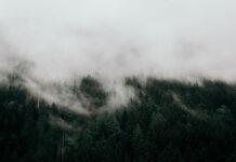 Organizacja górskiej wycieczki